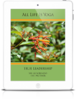 All Life Is Yoga: True Leadership (eBook)