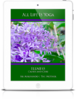 All Life Is Yoga: Illness - Causes and Cure (eBook)